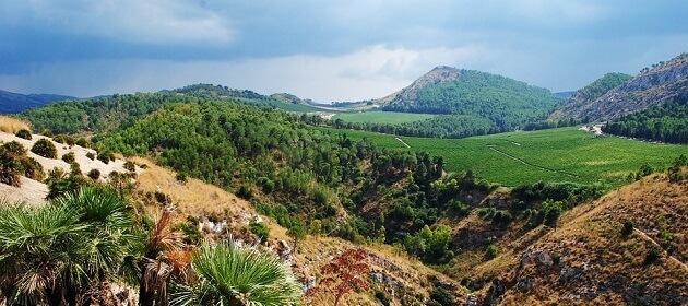 Nos paradis pour une dégustation de vin en Sicile